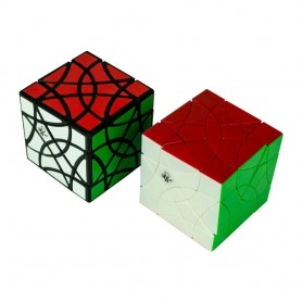 DaYan Shuang FeiYan Cube