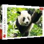 Puzzle Trefl Panda Gigante de 500 Piezas