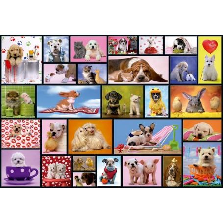 Puzzle Educa Momentos Compartidos 1000 Piezas